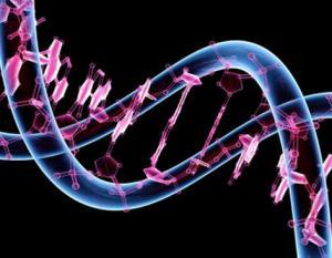 Genoma 1