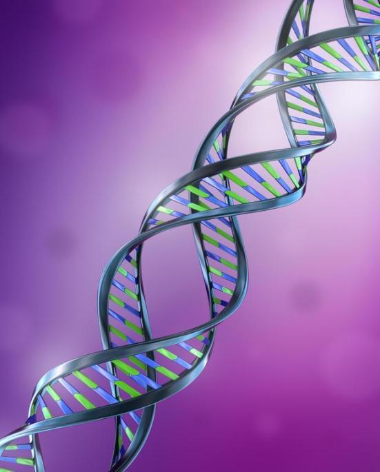 Fitas de DNA (ilustração). (Crédito; Alexandr Mitiuc, Fotolia)