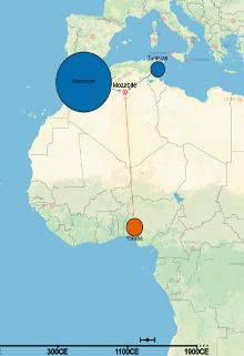 Fontes de genética para Mozabite, etnia berbere que habita a região de Mzab, no Saara argelino. (Cortesia do cromossomo Pintura Coletivo)