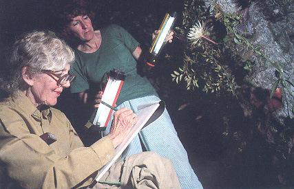 Margaret, com a pobre da sua assistente a segurar nos holofotes, para ela poder desenhar a sua Flor-da-Lua