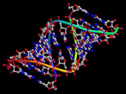 © Protein Data Bank