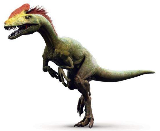 """Esta ilustração de um Guanlong, um antepassado do Tyrannosaurus rex, que viveu 160 milhões de anos na atual China, mostra a crista de penas que lhe deu o nome, que significa """"dragão coroado"""" em chinês. A forma primitiva de penas provavelmente coberto seu corpo, ea crista cabeça pode ter sido usado para o reconhecimento ou namoro espécies displays.  ILUSTRAÇÃO DE 422 SUL, NATIONAL GEOGRAPHIC CREATIVE"""