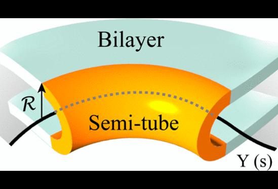 O centro desse tubo é descrita por uma curva que forma o limite de uma superfície de matemática (cinzento) descrevendo a folha. Crédito: Cortesia PRL