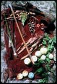O cozimento de vegetais, especialmente tubérculos, permitiu a expansão do cérebro, argumentam Richard Wrangham, da Harvard University, e colaboradores
