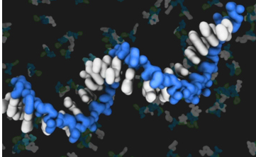 RNA-world