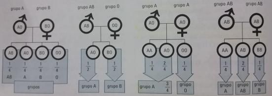 Alguns tipos de cruzamentos no Sistema ABO