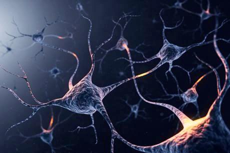 Ilustração de neurônios: o estudo mostrou o papel do córtex entorrinal processamento de informação relativa ao fundo na memória episódica (© Viaframe / Corbis)