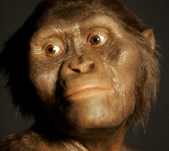 Lucy, viveu a 3.2 milhões de anos atrás. Pat Sullivan/AP