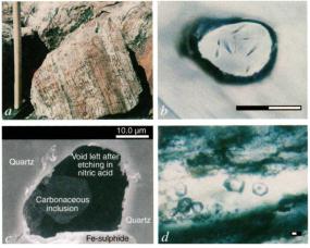 A) Akilia Island datada em 3.8 bilhõesde anos. B,C e D) micrographs of anhedral, oblategrains and associated carbon in early Archaen. B) Crista de Apatita, C) Micrografia eletronica de apatita, d) Microbanda Quartzitica dos sedimentos do cráton de Pilbara (Leste da Australia) com agrupamentos de apatita e matéria organica laminar