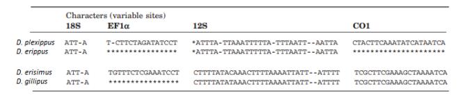 Danaus sequencia