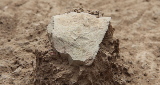 TEMPO FERRAMENTA Uma das várias descobertas de hominídeos significativas em 2015, este 3,3 milhões de anos de idade de pedra moda do Quênia sugere primeiros hominídeos utilizadas ferramentas antes do gênero Homo evoluíram. MPK-WTAP