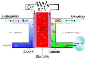No lado do ânodo o hidrogênio flui para o catalisador onde é dissociado em prótons e elétrons.