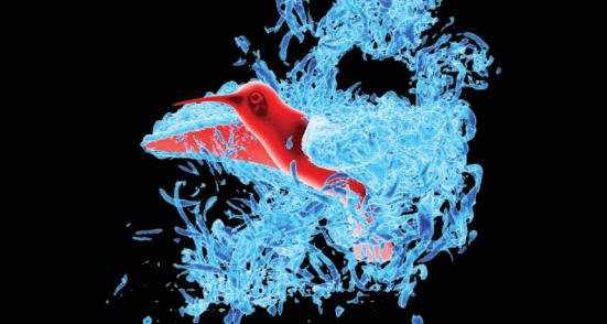 Pequenas bolsas de ar circule em torno asas de um colibri nesta imagem a partir de uma simulação de computador de voo. YAN REN, HAIBO DONG, Xinyan DENG, B. Tobalske (CC BY-NC 4.