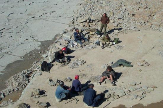coleta fóssil no Putilova Pedreira, Rússia. Crédito: David Harper