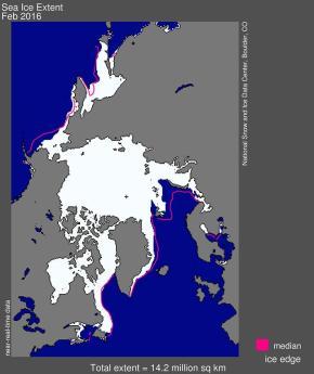 Arctic extensão do gelo marinho para fevereiro 2016 foi 14,22 milhões de quilômetros quadrados (5,48 milhões de milhas quadradas). A linha magenta mostra a 1981-2010 medida mediana para esse mês. A cruz preta indica o pólo norte geográfico. Crédito: National Snow and Ice Data Center.