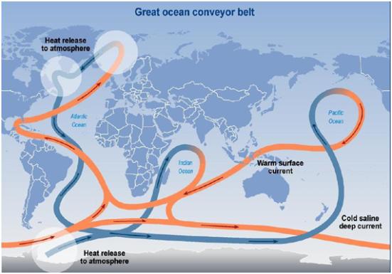 """circulação termoalina"""" ou """"Great Ocean Conveyor Belt""""."""
