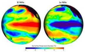 Localizado no Oceano Pacífico, esses mapas mostram padrões de temperatura da superfície do mar durante os episódios El Niño e La Niña. Crédito: Steve Albers / NOAA.