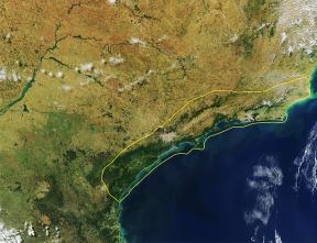 Imagem de satélite em que se observa o Corredor da Serra do Mar (linha amarela). É o maior trecho de Mata Atlântica no Brasil.