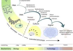 Evolução transformou a vida através de inovações importantes no armazenamento de informações e replicação, guloseimas, incluindo RNA, DNA, multicelularidade e cultura e língua. Argumentamos que a biosfera à base de carbono gerou um sistema cognitivo (em humanos) capazes de criar tecnologia que irá resultar em uma transição evolutiva comparáveis. A informação digital chegou a uma magnitude semelhante à informação na biosfera. Ele aumenta exponencialmente, exibe replicação de alta fidelidade, evolui através de fitness diferencial, a inteligência artificial é expressa através de (AI), e tem facilidade para recombinação praticamente ilimitadas. Como transições evolutivas anteriores, o potencial simbiose biológica e Entre informação digital vai chegar a um ponto crítico em que poderia competir Estes códigos através da selecção natural. Alternativamente, ESTA fusão foi possível criar um nível mais alto superorganismo low-conflito Empregando uma divisão de trabalho na realização de tarefas informativos.