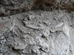 Os restos de um antigo, primitivo pit-fogo (lareira). Supostamente do Neanderthal ou Neolítico (cerca de 45000 anos a partir da presente).