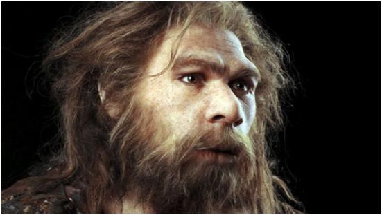 Neanderthal. Fonte: Pint