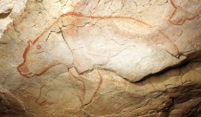 """Estes três ursos são encontrados perto da entrada pré-histórica [não no presente entrada] para a caverna, em um painel em um pequeno recesso. Os ursos são desenhadas em vermelho. O urso Central foi protegido usando o relevo natural na parede da caverna, com o ombro na sequência da superfície da rocha. O urso central é uma figura completa, enquanto que à esquerda do que é uma cabeça de urso isolado, e à direita do que um urso completa próximo. Isso pode representar um detetive de ursos. O artista usou uma técnica conhecida como """"toco-desenho"""" - ele usou os dedos ou um pedaço de pele para pintar o focinho e para enfatizar os contornos da cabeça e quartos dianteiros; uma forma de perspectiva Bradshaw Foundation"""