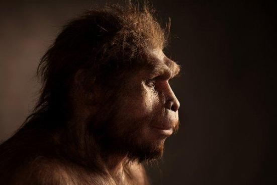 Reconstrução facial do Homo erectus de Sangiran, o mais completo da Ásia datado entre 1,3 e 1 milhão de anos. Fonte: Smithsonian.com