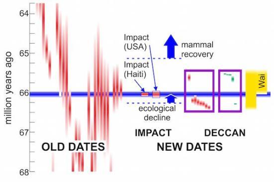 Um olhar mais afiado na extinção em massa do fim-Cretáceo. As barras vermelhas: datas de argônio-argônio, barras verdes: datas de urânio-chumbo; extensão vertical mostra incerteza. datas antigas são para lavas Deccan. caixas roxas contêm novas datas, de alta precisão. Horizontal barra azul: data com a incerteza para a extinção em massa do fim-Cretáceo (com base em traços de impacto). Barra amarela: erupções Deccan, com o Wai mais volumoso lavas indicado. declínio ecológico e recuperação baseados em fósseis em Wyoming / Montana. Fontes: Richards et al (2015), Schoene et al (2015), Renne et al (2015), Renne et al (2013), Entorse et al (2015)