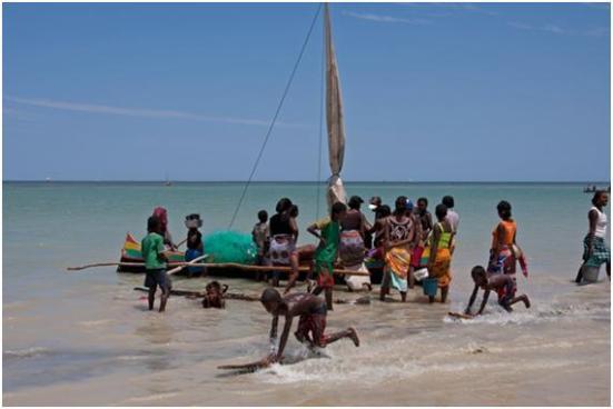 Vezo é o termo para o povo costeiro semi-nômade ao sul de Madagascar e são pessoas que se acostumaram a viver da pesca marítima. Os Vezo falam um dialeto da língua Malgaxe, que é uma filial do grupo de língua malaio-polinésia derivado das línguas Barito, falada no sul de Bornéu. Eles atualmente preenchem a maior parte da zona litorânea ao longo da costa oeste de Madagascar entre Toliara e Mahajanga.