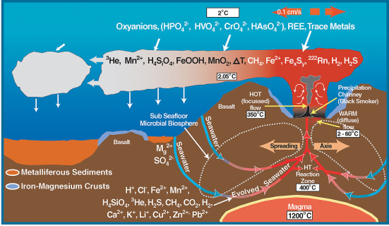 Diagrama de ciclo biogeoquímico em uma fonte hidrotermal. Günter Wächtershäuser propôs a teoria do ferro-enxofre para sugerir que a vida pode ter se originado em fontes hidrotermais. Wächtershäuser propôs que uma forma primitiva do metabolismo antecedeu genética. Por metabolismo ele traz um ciclo de reações químicas que libertam energia em uma forma que pode ser aproveitada por outros processos. Pesquisas experimentais por modelagem computacional indica que as superfícies das partículas minerais dentro fontes hidrotermais ter propriedades catalíticas semelhantes a enzimas e são capazes de criar moléculas orgânicas simples, tais como o metanol, ácido fórmico.