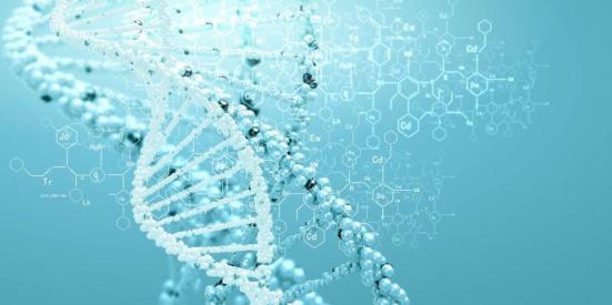 DNA (arquivo de ilustração). Crédito: © Sergey Nivens / Fotolia
