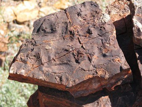 Traços das bactérias mais antigas são encontrados apenas em foormazioni rocha rara que há bilhões de anos ter escapado à reciclagem na litosfera, como esta amostra de rocha da formação da Dresser da região de Pilbara, na Austrália Ocidental. (Cortesia Nora Noffke)