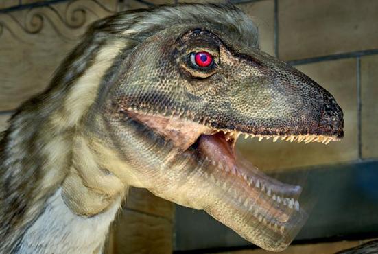 A descoberta de que Deinonychus tinha penas ajudou a transformar a forma como os paleontólogos pensam sobre dinossauros.