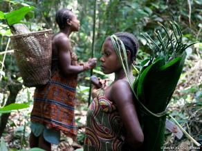 """Mulheres caçadoras coletoras. Ocorre no Congo e Filipinas. Igualdade sexual é parte de um conjunto importante de alterações à organização social, incluindo coisas como par-ligação, nossos cérebros grandes, sociais e linguagem, que distingue os seres humanos"""", disse ele. """"É um passo importante que realmente não tem sido destacada antes"""