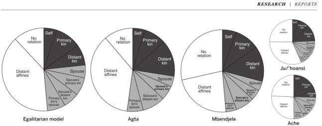 padrões de co-residência em todo populações igualitárias modelados e observados. área do gráfico representa a proporção de todas as duplas em nove categorias de parentesco para o modelo igualitário (à esquerda), Agta (centro-esquerda), Mbendjele (centro direita), Dor (parte inferior direita) e Ju / 'hoansi (canto superior direito). / 'dados hoansi doer e Ju redesenhado de Hill et al. (2011).