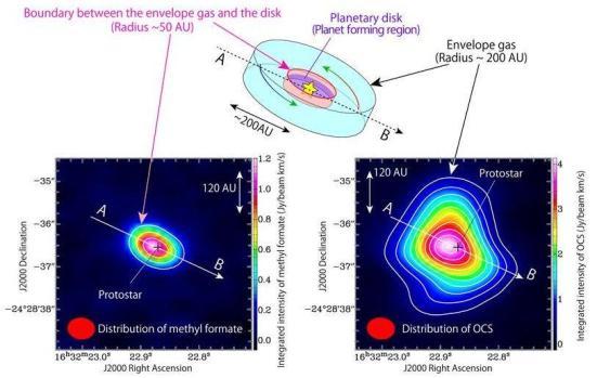 A ilustração esquemática do gás infalling em torno do proto. A estrutura do disco com um raio de cerca de 50 UA existe em torno do proto-estrela. O disco, por sua vez é rodeado por um envelope de gás se estendeu por uma escala de 200 UA. OCS existe no gás do envelope, enquanto o formato de metilo existe principalmente na área limite entre o gás do envelope e a estrutura do disco. distribuição de intensidade (canto inferior esquerdo) de formato de metilo (HCOOCH3) observado com ALMA. Uma estrutura alongada ao longo de A-B pode ser vista centrada na posição do proto. formato de metilo está localizado dentro de 50 UA do proto-estrela. (Canto inferior direito) distribuição da intensidade da OCS (sulfeto de carbonila) observado com ALMA. Uma estrutura alongada ao longo de A-B pode ser vista centrada na posição de posição protostar, semelhante ao caso de OCS. No entanto, a distribuição de OCS (~ 200 UA) é mais alargado do que o de formato de metila.