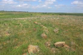Estas rochas são pensados para ter uma vez marcada a viagem do sol durante todo o ano. (ABC: Hamish Fitzsimmons)