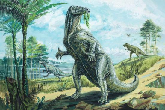 Uma impressão de um artista de uma espécie de Iguanodon. David Roland / Shutterstock;