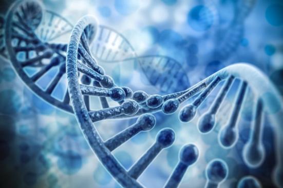 DNA, representação, (stock image). Crédito: © DigitalGenetics / Fotolia