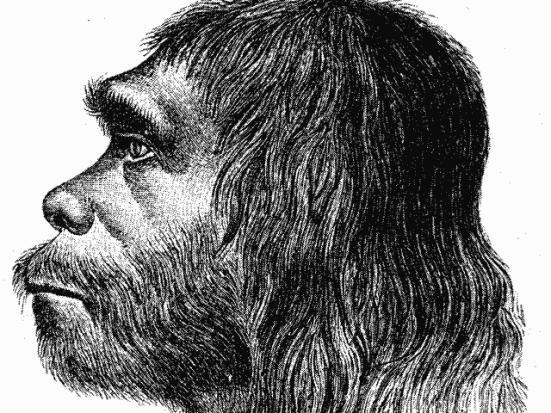 Reconstrução do homem de Neanderthal. Crédito: domínio público