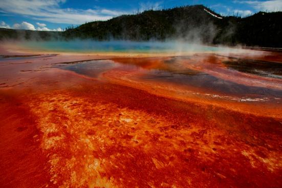 Yellowstone National Park, onde alguns dos microrganismos Asgard foram encontrados.
